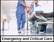 services-criticalcare